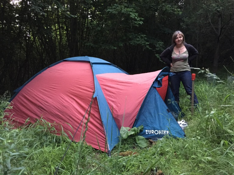 Tent once fawn had bolted