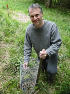 David cages an oak seedling in spring