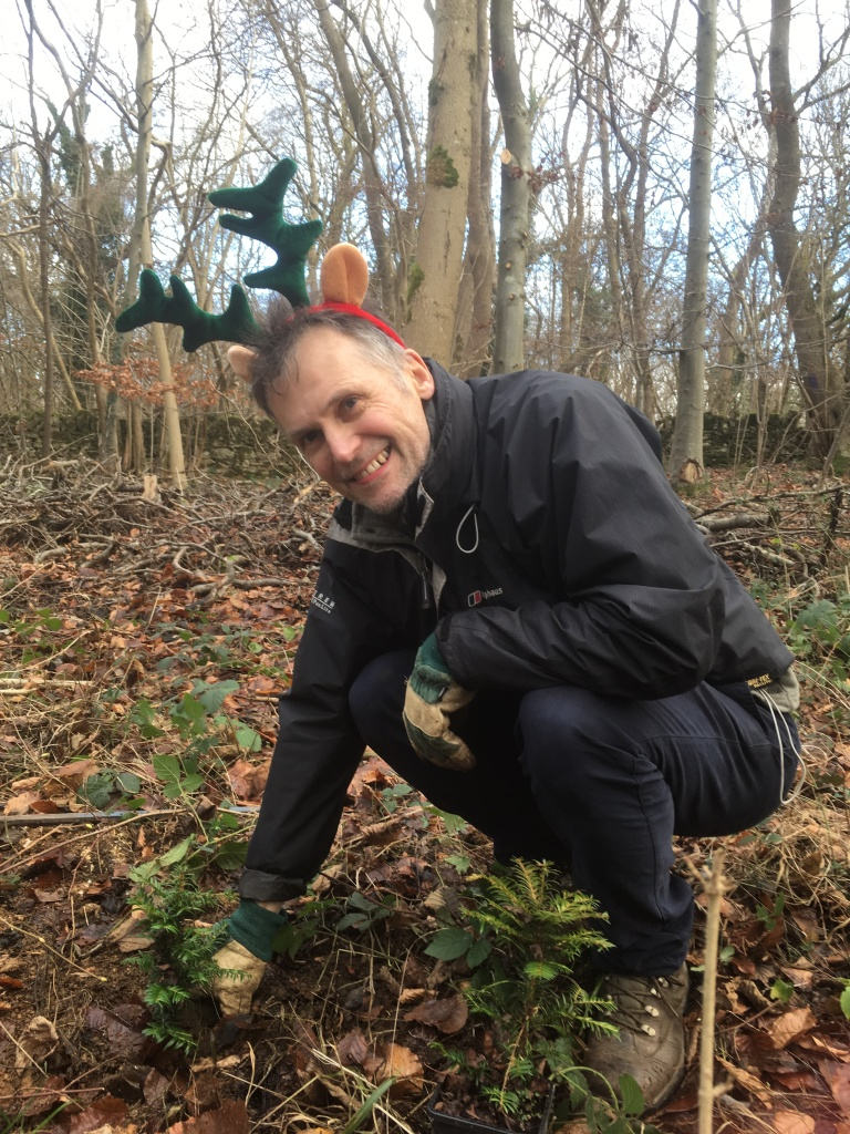 David planting yews